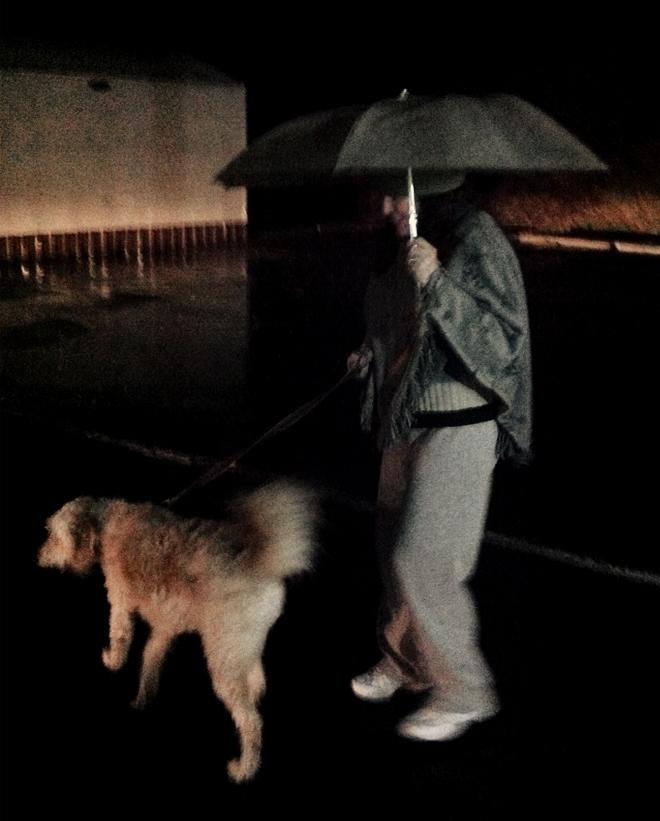 georgia-trip-raining-walking-the-dog