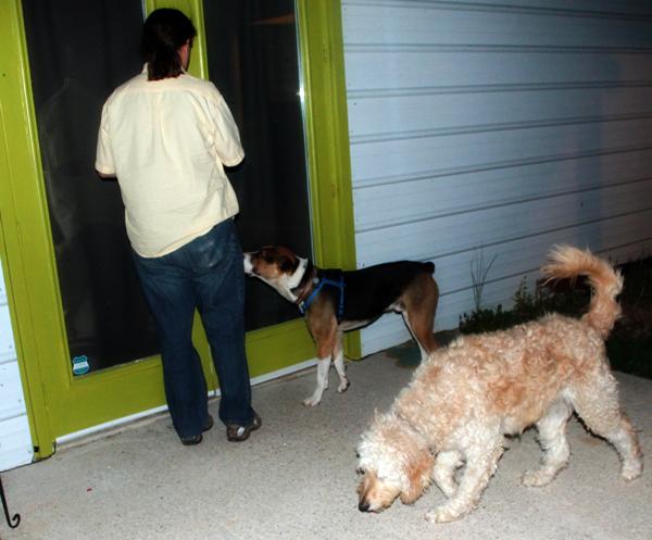 jackson-home-door-