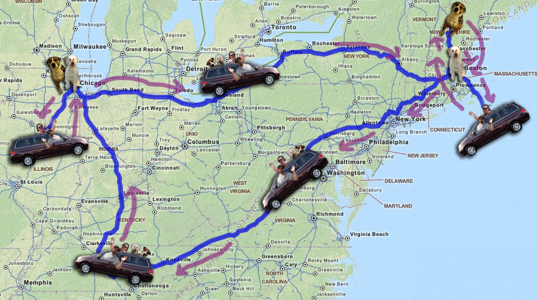 map-van-dogs-to-chicago-nh-nantucket